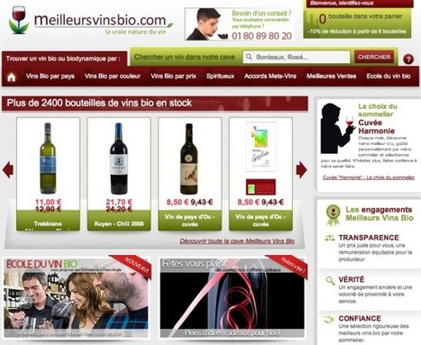 Petite Critique de Site : www.meilleursvinsbio.com | WebZine E-Commerce &  E-Marketing - Alexandre Kuhn | Scoop.it