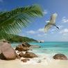 Tourisme de l'Océan Indien