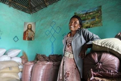 L'agriculture (familiale), priorité pour l'emploi en Afrique | Economie Responsable et Consommation Collaborative | Scoop.it