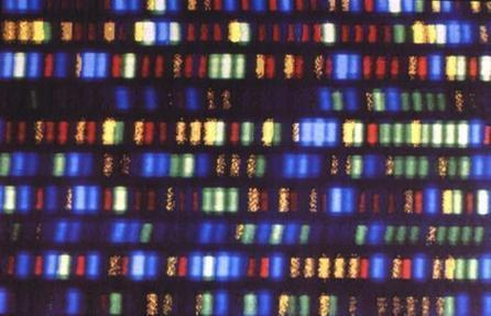 What Are Genetically Recoded Organisms? | Technology | Scoop.it