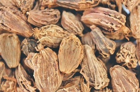 Large cardamom trading falls as price plunges. | F&FNews | Scoop.it