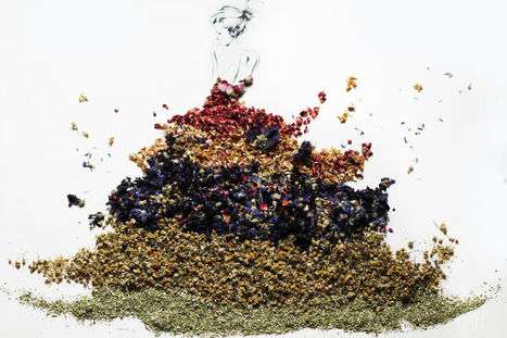 Beautiful #Portraits Made Of Various #Herbs And #Dried #Flowers. #art #collage #fashion | Luby Art | Scoop.it