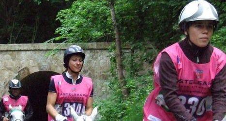Endurance équestre : trois jours de compétition   Cheval et sport   Scoop.it