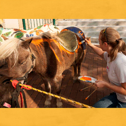 Festival of the Horse to Celebrate Equine Heritage | SurfKY.com | Home & Horse | Scoop.it