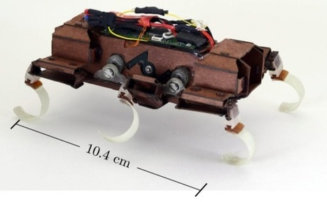 World's Fastest Robotic Roach is Created Using 3D Printed Parts by Team at UC Berkeley | Heron | Scoop.it