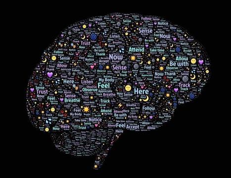 [Dossier] Sciences cognitives et apprentissage – 3/5 - le blog de Solerni - plateforme de MOOCs   Apprendre et former   Scoop.it