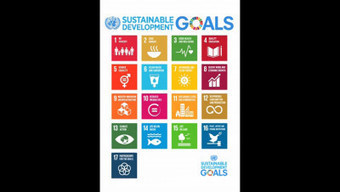 United Nations: A Look at the Sustainable Development Goals | EU Environment | Scoop.it