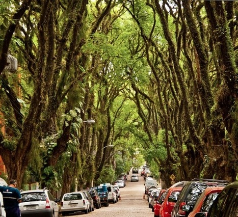 The Hidden Street of Porto Alegre Brazil is Probably the Most Beautiful Street in the World | Trips | Scoop.it