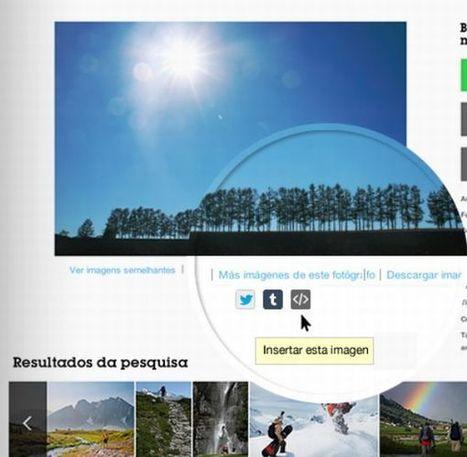 Getty Images ofrece 35 millones de fotos que se pueden insertar gratis - tuexperto.com | ICT & Education | Scoop.it