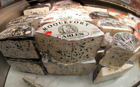 The secret to why the French live longer - Roquefort cheese | No Such Thing As The News | Scoop.it