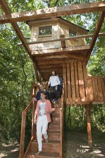 Abierto en el robledal de Amati (Ultzama) el primer complejo turístico con cabañas en árboles de Navarra | PROYECTO ESPACIOS | Scoop.it