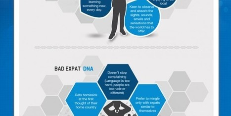 Do you have expat DNA? An infographic - Your Expat Child   Talent Mobility Magazine   Scoop.it