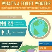What's a Toilet Worth? | Visual.ly | The Cultural & Economic Landscapes | Scoop.it