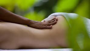 stage de formation au Drainage Lymphatique Energétique  VAR PACA juillet 2014 | Fédération des Massages FFPMM | Scoop.it