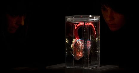 In Amazing Feat of Science, Surgeons Save Child's Life by 3-D Printing a New Heart | Impresión 3D | Scoop.it