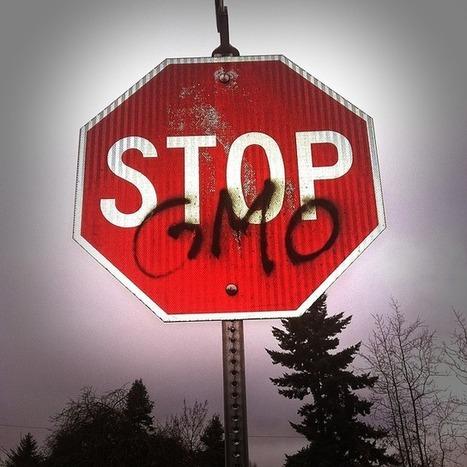GMO: Demon Weeds   www.paleomessenger.com   Scoop.it