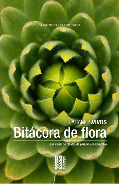 Páramos vivos (Colección). Bitácora de flora. Guía visual de plantas de páramos en Colombia | Agua | Scoop.it