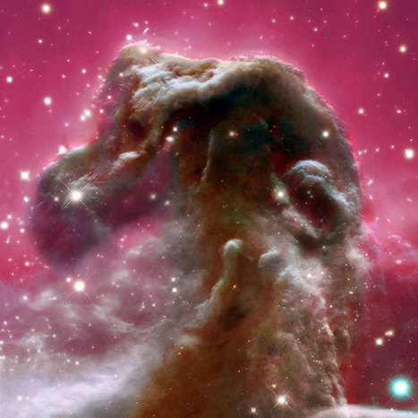 APOD: 2014 July 28 - The Horsehead Nebula from Blue to Infrared   tecnologia s sustentabilidade   Scoop.it