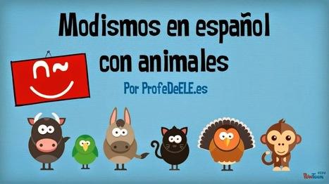 Expresiones en español con animales | Español para los más pequeños | Scoop.it