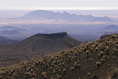 Réserve de biosphère El Pinacate et le Grand désert d'Altar - UNESCO World Heritage Centre | Les déserts dans le monde | Scoop.it