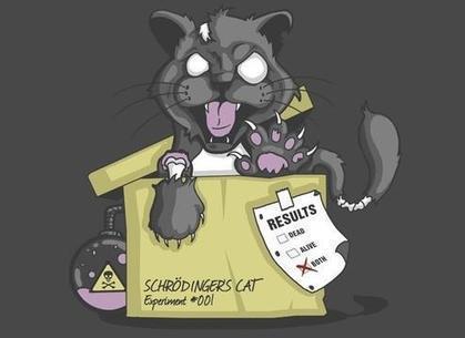El gato de Schrödinger ha vuelto.- Humor muy Racional | Humor racional | Scoop.it