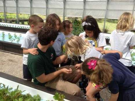 GYO Greens training the next generation of master gardeners | Aquaponics in Action | Scoop.it