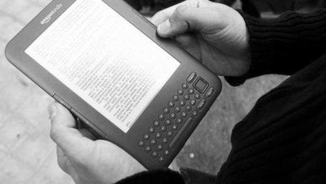 Las incógnitas del libro electrónico . Diario de Noticias de Navarra | Litteris | Scoop.it