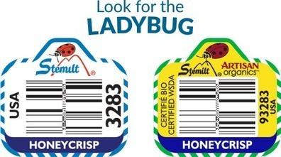 Honeycrisp Apples - a crowd favorite | Favorites | Scoop.it