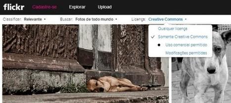 Ahora es más fácil filtrar por imágenes Creative Commons en Flickr | Organización y Futuro | Scoop.it