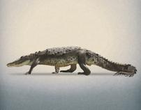 DestrucIndusty: animaux à produits, un vrai travail artistique à découvrir | youyouk | Scoop.it