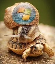 Linux est plus rapide que Windows et c'est un développeur Microsoft qui le dit ! | Veille - Informatique et réseaux | Scoop.it