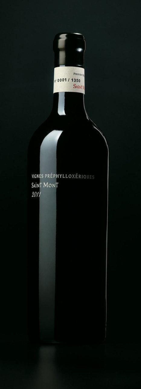 Saint-Mont VignesPre-Philoxériques | Le Vin et + encore | Scoop.it