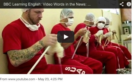 "BBC Learning English: Weekly Video ""Words in the News"": Today:A delicate job for hard men (22nd May 2013) 