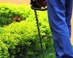 Weed control services in UK, Management services – AJW Ltd   Landscaping and Weed Control   Scoop.it