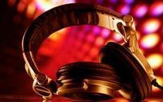 Best Indian DJ in New York Metro Area, New York   Indian Local Needs   Scoop.it