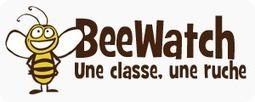 Beewatch : Sensibiliser les enfants | Beewatch | Scoop.it
