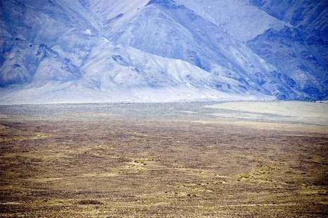 2015 Snow Leopard Calendar [ISLT-Calendar:50103] - $15.00 : Snow Leopard Trust | Conservation | Scoop.it