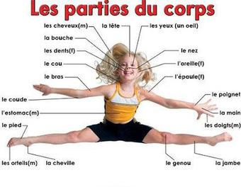 FLE en ESO: Les parties du corps : regardez , chantez | une bonne pédagogie | Scoop.it