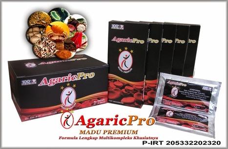 Obat Herbal Kolesterol Tinggi ~ AgaricPro | Solusi Masalah Kesehatan Anda | bestagaric | Scoop.it