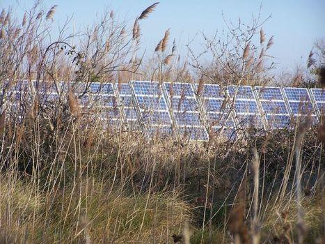 La Suède, exemple pour une transition énergétique européenne ... | Transition énergétique | Scoop.it