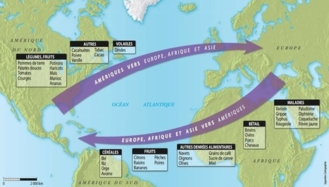 Plantes et microbes, acteurs de l'histoire - La connaissance de l'échange colombien progresse. | Enseigner l'Histoire-Géographie | Scoop.it