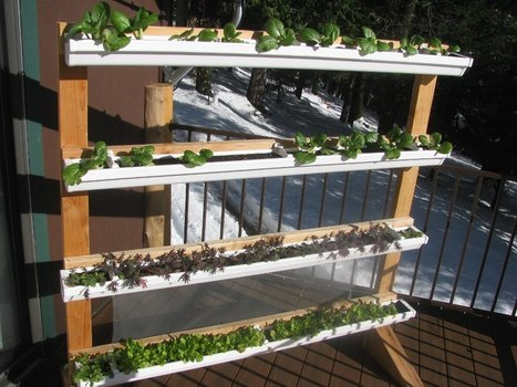 Vertical Gutter Gardens   Sustain Our Earth   Scoop.it