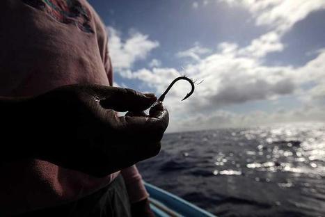 Meeresmüll: Initiative will die Ozeane von Plastik befreien - WiWo Green | Plastikinsel | Scoop.it