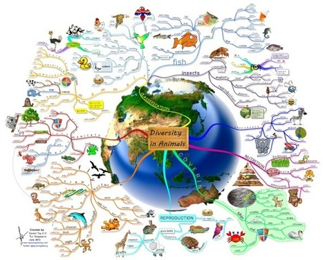 Diversity in Animals mind map | Cartes mentales, cartes heuristiques | Scoop.it