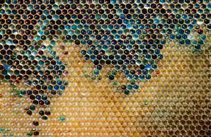 Blue and green honey makes French beekeepers see red | Nature Animals humankind | Scoop.it