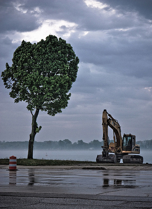 How can an organisation become more like a Mighty Oak than a machine? | Humanizing Organizations | Scoop.it