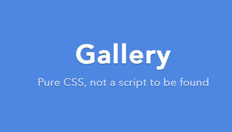Create image gallery with css only no javascript. | W3 Update | Tutorial | Scoop.it