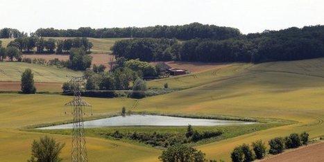 La réforme désoriente le monde agricole | Agriculture en Dordogne | Scoop.it