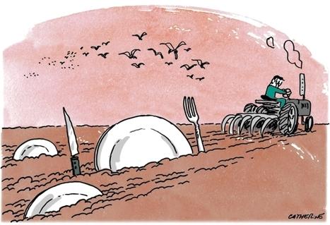 La crise alimentaire n'est pas une fatalité - Les Échos | alternatives agricoles | Scoop.it