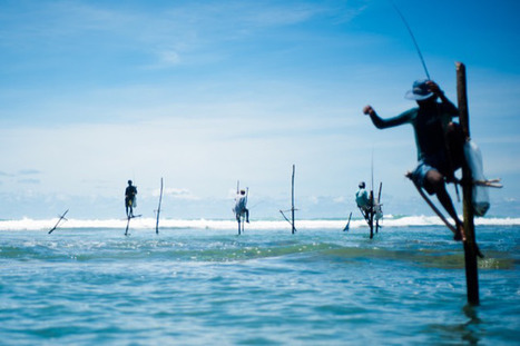 Notre prochain grand voyage : Sri Lanka et Maldives | Actu & Voyage au Sri Lanka | Scoop.it